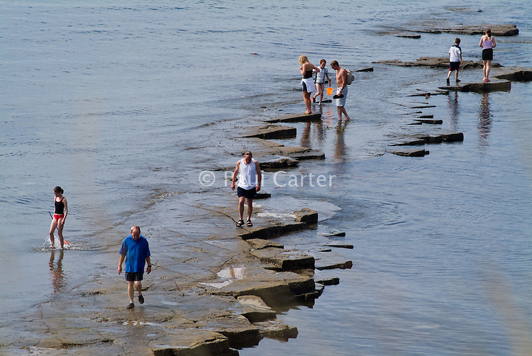 People on one of the Kimmeridge Ledges in Kimmeridge Bay.Views along the South West Coast Path, near Kimmeridge.