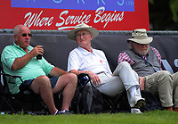 Fans watch from the embankment on day four of the international cricket 2nd test match between NZ Black Caps and England at Seddon Park in Hamilton, New Zealand on Friday, 22 November 2019. Photo: Dave Lintott / lintottphoto.co.nz