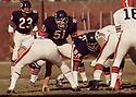 Chicago Bears Dick Butkus (52) during a game from his 1969 season with the Chicago Bears. Dick Butkus played 9 years, all for the Chicago Bears. He was a 8-time Pro Bowler, 5-time first team Pro Bowler and was inducted to the Pro Football Hall of Fame in 1979.(SPORTPICS)