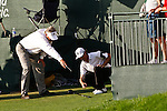 PALM BEACH GARDENS, FL. - Will MacKenzie gets a ruling after hitting his ball into the stands during Round Three play at the 2009 Honda Classic - PGA National Resort and Spa in Palm Beach Gardens, FL. on March 7, 2009.