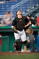 Batavia Muckdogs catcher J.D. Osborne (23) tracks a foul ball popup in front of home plate umpire Thomas Fornarola during a game against the Lowell Spinners on July 16, 2018 at Dwyer Stadium in Batavia, New York.  Lowell defeated Batavia 4-3.  (Mike Janes/Four Seam Images)