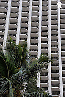Palm tree and Skyscraper facade (Licence this image exclusively with Getty: http://www.gettyimages.com/detail/85071216 )