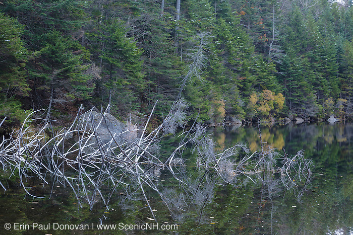 Upper Greeley Pond in the White Mountains, New Hampshire USA during the autumn months.