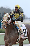 February 22, 2015: Oaklawn Park in Hot Springs, AR. Justin Manning/ESW/CSM