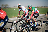 Elia VIVIANI (ITA/Deceuninck-Quick Step) brushin' up to Fernando Gaviria (COL/UAE-Emirates)<br /> <br /> 110th Milano-Sanremo 2019 (ITA)<br /> One day race from Milano to Sanremo (291km)<br /> <br /> ©kramon