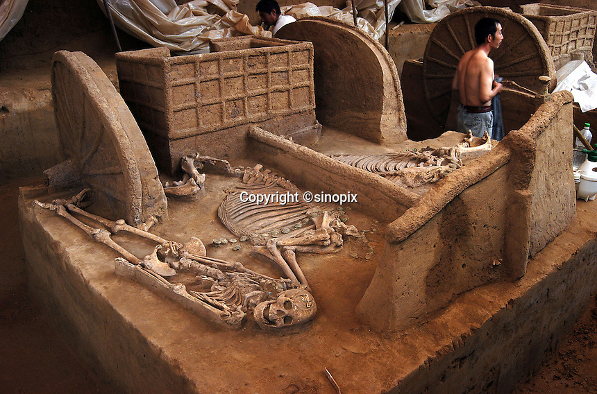 Ancient Chinese chariots dating back to the Sang Dynasty (3300 years ago) are uncovered in Anyang, Henan Province. The chariots are the oldest and best preserved ever discovered. The chariots were buried with their horses and grooms who were sacrificed at burial...PHOTO BY HE SHI / SINOPIX