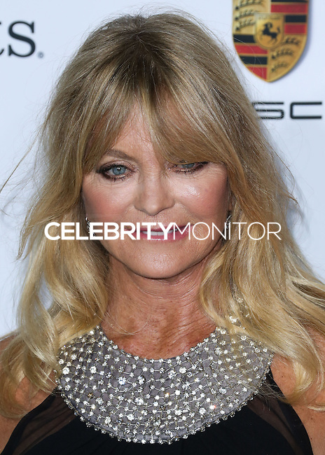 CULVER CITY, LOS ANGELES, CA, USA - NOVEMBER 08: Goldie Hawn arrives at the 3rd Annual Baby2Baby Gala held at The Book Bindery on November 8, 2014 in Culver City, Los Angeles, California, United States. (Photo by Xavier Collin/Celebrity Monitor)