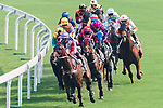 Horses compete during the race 6 of HKJC Horse Racing 2017-18 at the Sha Tin Racecourse on 16 September 2017 in Hong Kong, China. Photo by Victor Fraile / Power Sport Images