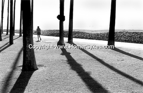 SANTA BARBARA CALIFORNIA   USA 2001. A BARE CHESTED MAN WEARING RUNNING SHORTS AND TRAINERS IN SILHOUETTE EXERCISES IN PARKLAND BETWEEN TRESS  ADJACENT TO THE BEACH.