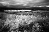Infrared field with fence, Pontotoc, Texas.<br /> <br /> Nikon F3HP, 24mm lens, Kodak High Speed Infrared film, red filter