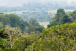 Gallery forests in tropical rainforest and savanna mosaic, Lope National Park, Gabon