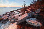 View of the Schoodic coastline from the east side of the Schoodic Peninsula during winter at Acadia National Park, Maine, USA