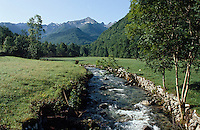 Europe/France/Midi-Pyrénées/09/Ariège/Couserans/Vallée du Haut-Salat/Env Aulus: La vallée