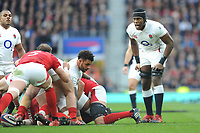 Maro Itoje of England looks on during the Guinness Six Nations match between England and Wales at Twickenham Stadium on Saturday 7th March 2020 (Photo by Rob Munro/Stewart Communications)