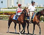 Currency Swap with jockey Rajiv Maragh up on post parade at Gulfstream Park. Hallandale Beach, Florida. 03-16-2012