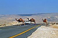 Estrada no deserto de Negev em Israel. 1995. Foto de João Caldas.