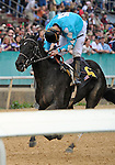 Scenes and horse racing personalities (Cliff Berry wins the 1st race on Artic Sea) from around the track during Rebel Stakes Day on March 19, 2011 at Oaklawn Park in Hot Springs, Arkansas.  (Bob Mayberger/Eclipse Sportswire)