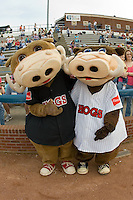 Wally and Wilbur the Warthogs ham it up at Ernie Shore Field in Winston-Salem, NC, Friday April 11, 2008.