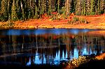 Fall image shot across Reflection Lake, Mount Rainier National Park