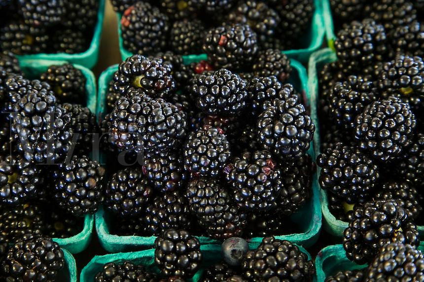 Cartons of blackberries