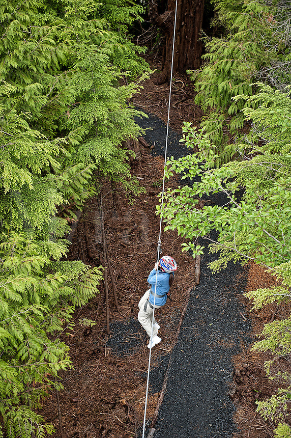 Woman enjoys a zipline adventure through the trees, Ketchikan, AK, Alaska, USA