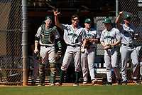 Dartmouth Big Green Ben Rice (9), Kolton Freeman (28), Michael Calamari (3), Trystan Sarcone (14), and Nathan Skinner (15) during a game against the Omaha Mavericks on February 23, 2020 at North Charlotte Regional Park in Port Charlotte, Florida.  Dartmouth defeated Omaha 8-1.  (Mike Janes/Four Seam Images)