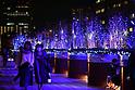 Christmas illuminations at Tokyo's Ebisu Garden Place