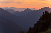 Late evening light over mountain ridges in Olympic National Park, WA.  Summer.