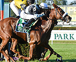 Main Sequence (no. 5), ridden by Rajiv Maragh and trained by H. Graham Motion, wins the 38th running of the grade 1 Joe Hirsch Turf Classic Invitational Stakes for three year olds and upward on September 27, 2014 at Belmont Park in Elmont, New York.  (Bob Mayberger/Eclipse Sportswire)