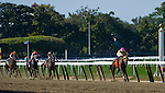 September 27, 2014: Belle Gallantey, ridden by Jose Ortiz, wins the Beldame Stakes (a Breeders' Cup Win and You're In Race) on Jockey Club Gold Cup Day at Belmont Park Race Track in Elmont, New York. Scott Serio/ESW/CSM