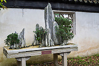 Suzhou, Jiangsu, China.  Rock Formations in Bonzai Garden, Tiger Hill.