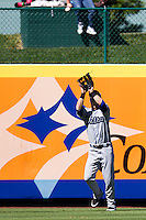 Corey Dickerson (34) of the Tulsa Drillers catches a ball hit to left field during a game against the Springfield Cardinals at Hammons Field on September 9, 2012 in Springfield, Missouri. (David Welker/Four Seam Images)