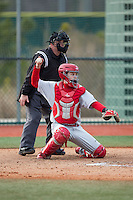 Cornell Big Red catcher Ellis Bitar (24) throws the ball back to his pitcher as home plate umpire Nathan Hamlett looks on during the game against the Seton Hall Pirates at The Ripken Experience on February 27, 2015 in Myrtle Beach, South Carolina.  The Pirates defeated the Big Red 3-0.  (Brian Westerholt/Four Seam Images)