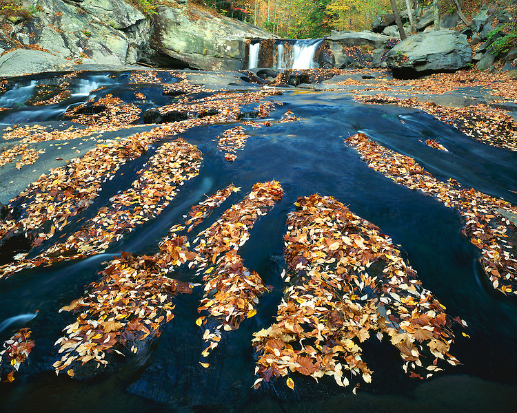 Waterfall and leaf-covered rock shelf on the Tellico River; Cherokee National Forest, TN