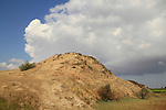 Tel Hasi in the Coastal Plain