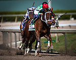 HALLANDALE FL - FEBRUARY 27: Cathryn Sophia #5, ridden by Javier Castellano powers off the turn en route to winning the Fasig-Tipton Davona Dale Stakes at Gulfstream Park on February 27, 2016 in Hallandale, Florida.(Photo by Alex Evers/Eclipse Sportswire/Getty Images)