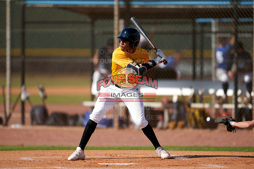 Danny Baez (1) bats during the Perfect Game National Underclass East Showcase on January 23, 2021 at Baseball City in St. Petersburg, Florida.  (Mike Janes/Four Seam Images)
