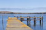 Old pier on Bodega Bay, California on the Sonoma Coast.  Famous California State Highway 1 hugs the cliffs along the Pacific Ocean Coast on the Sonoma Coast, south from the village of Mendocino to the famous Golden Gate.  This stunning coastline is often skipped by coastal drivers preferring the straight route along U.S. 101.  Represented by www.spacesimages.com