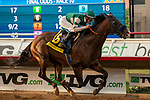 """DEL MAR, CA  AUGUST 17:  #6 Higher Power, ridden by Flavien Prat, in the stretch of the TVG Pacific Classic (Grade 1) """"Win and You're In Breeders' Cup Classic Division"""" on August 17, 2019 at Del Mar Thoroughbred Club in Del Mar, CA. (Photo by Casey Phillips/Eclipse Sportswire/CSM)"""