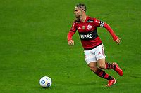 25th August 2021; Arena do Gremio, Porto Alegre, Brazil; Copa Do Brazil, Gremio versus Flamengo; Diego Ribas of Flamengo