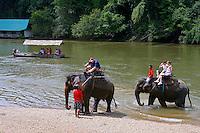Passeio turistico em elefante. Kachanaburi. Tailandia. 2008. Foto de Caio Vilela.