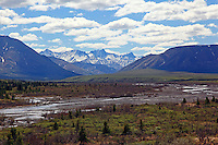 Savage River and mountains looking upstream