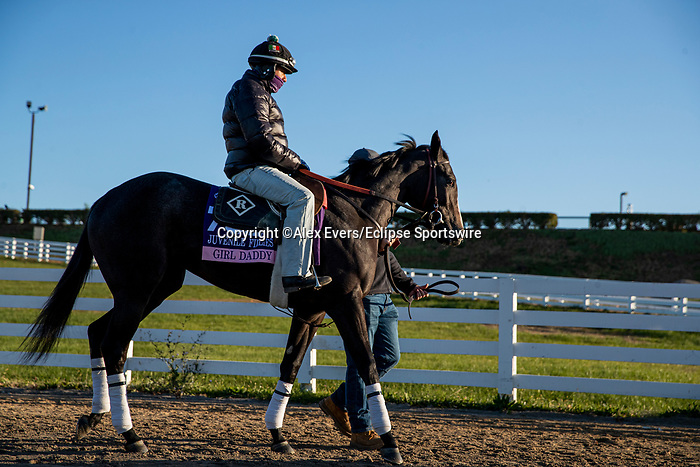 November 3, 2020: Girl Daddy, trained by trainer Dale L. Romans, exercises in preparation for the Breeders' Cup Juvenile Fillies at  Keeneland Racetrack in Lexington, Kentucky on November 3, 2020. Alex Evers/Eclipse Sportswire/Breeders Cup