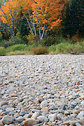 River bank of the Ammonoosuc River in Carroll, New Hampshire USA.