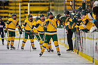 8 February 2020: The University of Vermont Catamounts celebrate a first period goal against the University of Connecticut Huskies at Gutterson Fieldhouse in Burlington, Vermont. The Huskies defeated the Lady Cats 4-2 in the first game of their weekend Hockey East series. Mandatory Credit: Ed Wolfstein Photo *** RAW (NEF) Image File Available ***