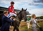 LEXINGTON, KY - OCTOBER 07: Suedois #3, ridden by Danny Tudhope enters the winners circle after the Shadwell Turf Mile Stakes at Keeneland Race Course on October 07, 2017 in Lexington, Kentucky. (Photo by Alex Evers/Eclipse Sportswire/Getty Images)
