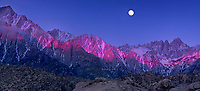 902000039 panoramic view - a full moon setting over mount whitney and the eastern sierras lit by pre-dawn alpenglow with the spectacular granite boulders of the alabama hills blm protected lands in the foreground in kern county california