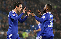 Peter Whittingham of Cardiff City celebrates scoring his sides first goal of the match from a penalty with team mate Junior Hoilett during the Sky Bet Championship match between Cardiff City and Preston North End at Cardiff City Stadium, Wales, UK. Tuesday 31 January 2017