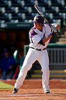 Jake Mahon (25) of the Evansville Purple Aces at bat during a game against the Indiana State Sycamores in the 2012 Missouri Valley Conference Championship Tournament at Hammons Field on May 23, 2012 in Springfield, Missouri. (David Welker/Four Seam Images)