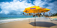 Yellow umbrella with snorkeling masks hooked under it on Porto de Galinhas beach, with the ocean and palm trees in the background, in Ipojuca, Brazil